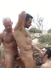 Hunky lifeguards Carlo and Dean thrust their hard chunks of meat into Dan face