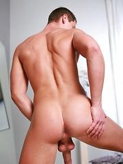 European stud Marek Pietrak shows cock