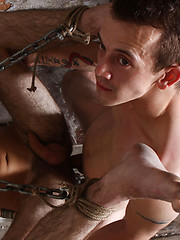 Dan fucks harder battering the boys hole as Jacobs head is forced down the toilet hole
