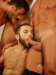 Hot gays blowjob orgy pictures