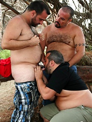 Three furry bears Marko Bulto, Viktor Karmen and Fran BJ enjoy fucking outdoors